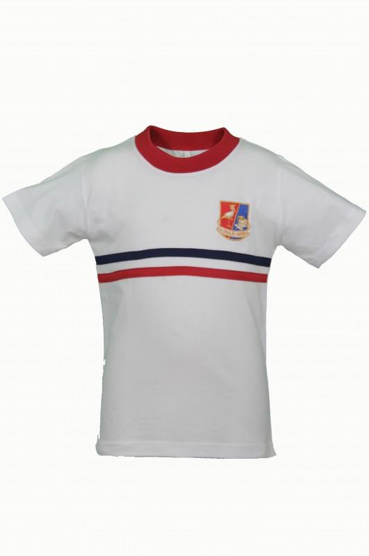 CAMISETA INFANTIL EL CANTIZAL - Camisetas deporte de infantil, modelo oficial del CEIPSO El Cantizal, Las Rozas de Madrid.