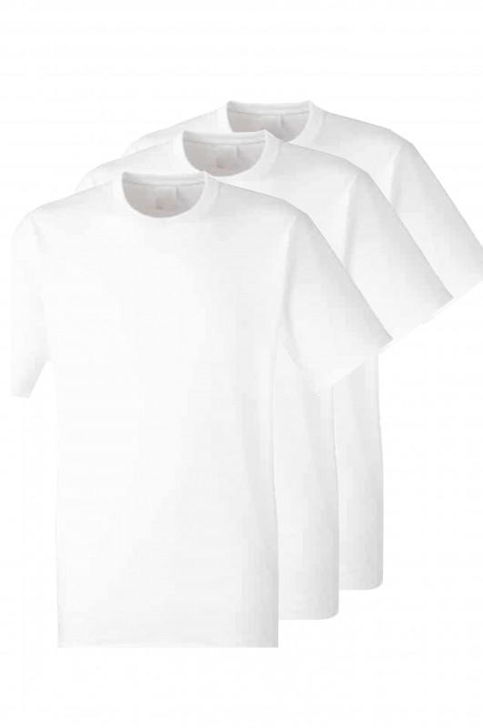 PACK 3 CAMISETAS M/Corta Antón Sevillano, sevilla la Nueva - Pack 3 camisetas blancas, modelo oficial CEIP Antón Sevillano, Sevilla la Nueva.